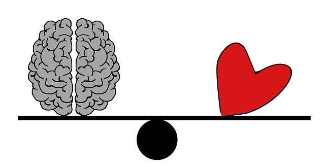 https://pixabay.com/de/illustrations/gehirn-leiter-psychologie-2146156/